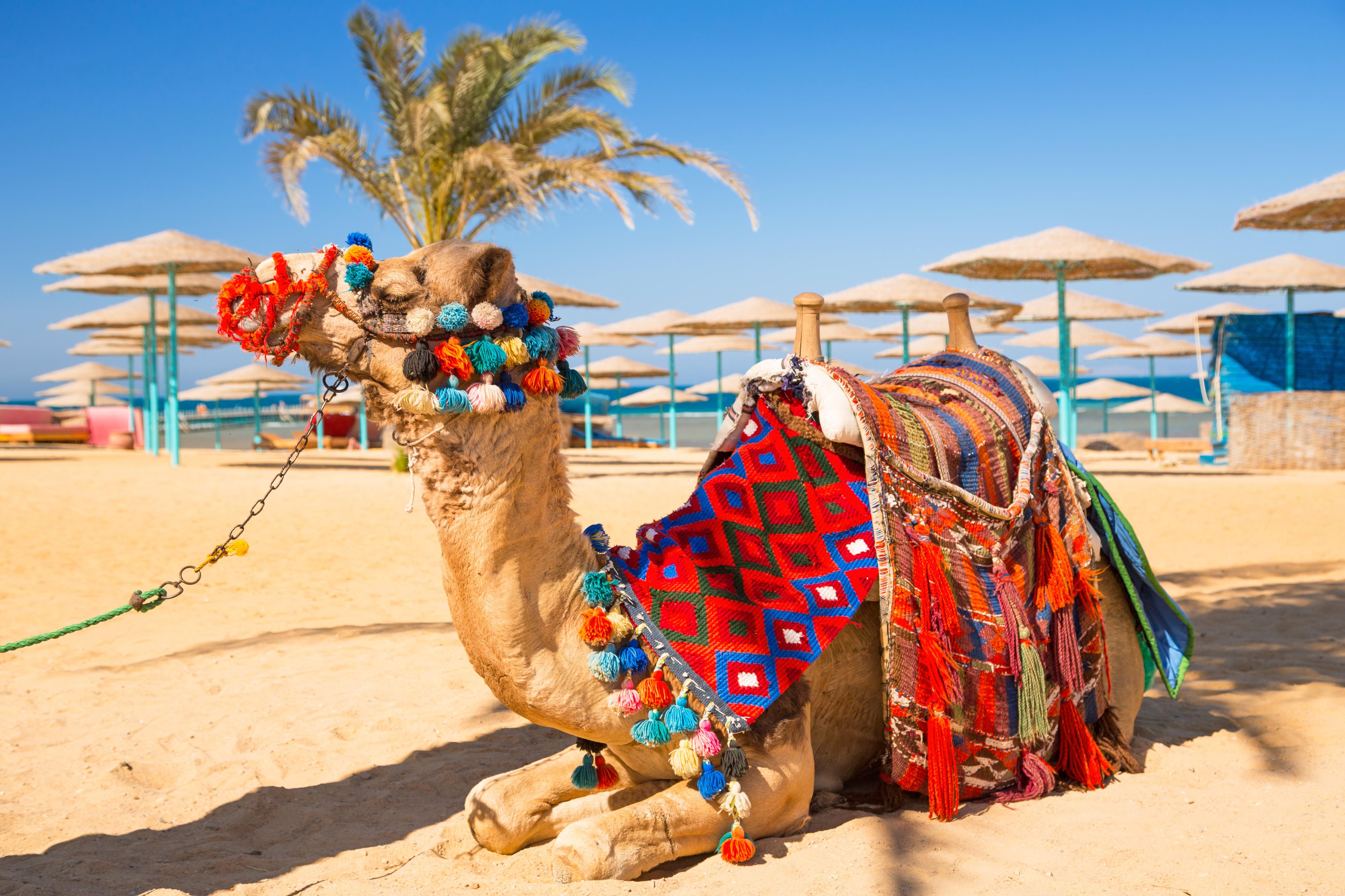 EGIPT-HURGADA