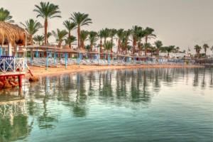 Marlin Inn Beach Resort 4*